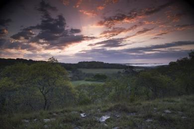 keeler06_block_oak_woodlands_landscape