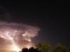 Madrone Illuminated by Lightning - © Cathy Illg