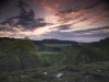 keeler_bcna_woodlands